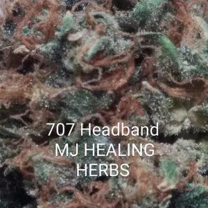 707 Head Band