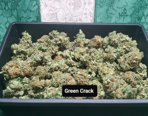 Green Crack Cannabis
