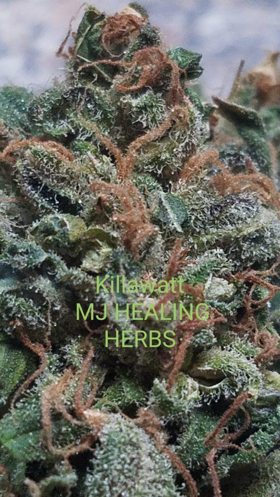 Killawatt Maine Cannabis