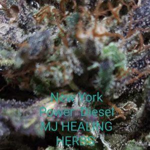 New York Power Diesel