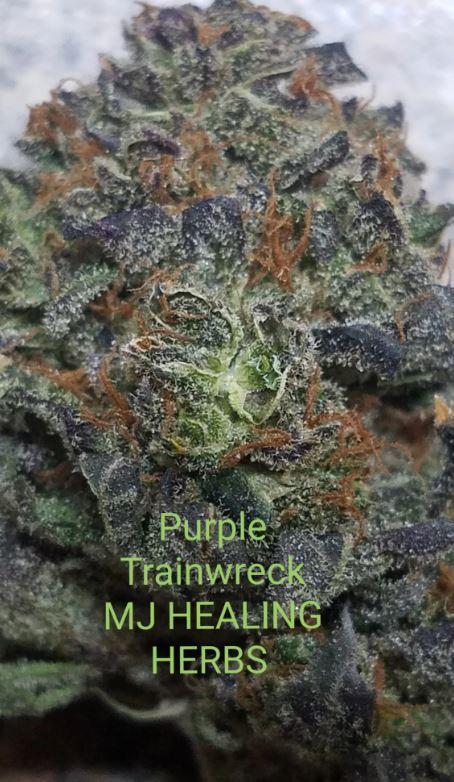 Maine Grown Cannabis