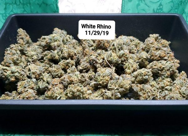 White Rhino Cannabis