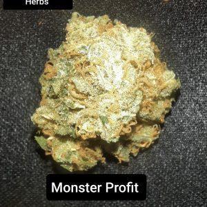 Monster Profit